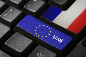 Getting to grips with online platforms : a look at the French example